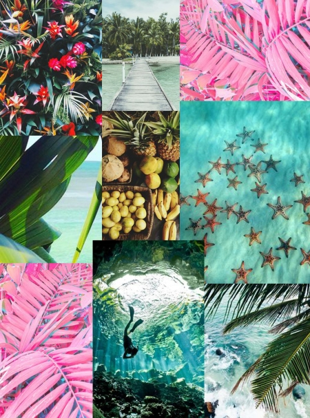 Monday Moodboard, tropical, Style Behind