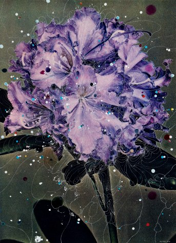 Sebastiaan Bremer (Dutch, b. 1970) Rhododendron Hybrid Schubert, 2016 Unique hand-painted chromogenic print with mixed media © Sebastiaan Bremer. Courtesy of the artist and Edwynn Houk Gallery, New York and Zurich.